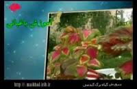 کلیپ آموزش گیاه شناسی : پرورش گیاه برگ گندمی