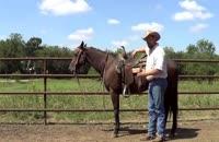 آموزش روشی امن برای اسب سواری