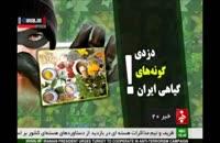 دزدیدن از ایران