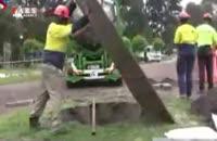 جابجایی درختان بزرگ در ملبورن استرالیا