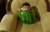 نوزادی در هندوانه !!!!!