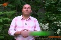 کلیپ گیاه شناسی : گل سنگ
