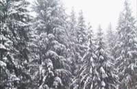 ساخت دانه های مصنوعی برف