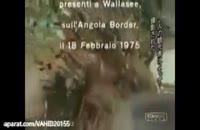زنده خواری انسان توسط شیرهای وحشی(۱۹+)