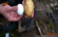 سیب زمینی و تخم مرغ ذغالی