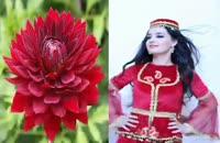 ترکی آذری شاد و زیبا