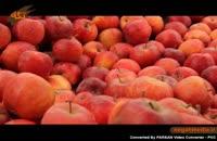 اموزش پزشکی: خواص سیب و پرتقال