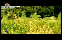 طبیعت گلستان