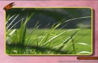 نماهنگ زیبای گیلکی بهار ترانه