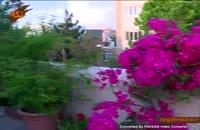 گونه هاي گياهي: گل كاغذی