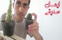 کاکتوس خوردن یک ایرانی