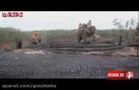 فیل های آتش نشان فیلم کلیپ دیدنی