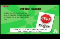 ۵ خاصیت اصلی دمنوش چای سبز