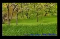 استان خوزستان  شلیل