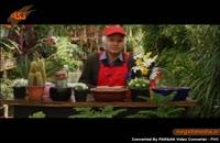 کلیپ گیاه شناسی : اشت سنبل
