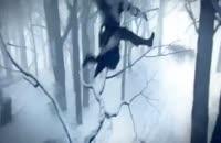 تریلری هیجانی از AssassiN CreeD III