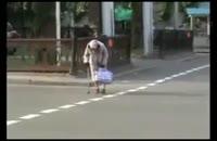 پیرزن بیچاره وسط جاده میمیره ولی کسی نمیاد:)))))