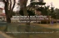 دیده شدن موجود عجیب در سونامی ژاپن