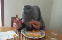 غذا خوردن سگ با چنگال!!!! جالب و طنز :)