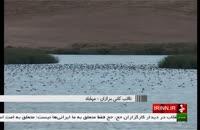 معرفی مناطق گردشگری _  تالاب کانی برازان