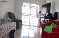 گربه دروازه بان ماهر+فیلم ویدیو کلیپ بامزه جالب عجیب